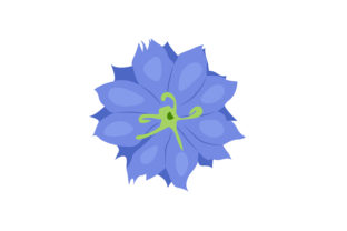Print on Demand: Nigella Flower Graphic Illustrations By archshape