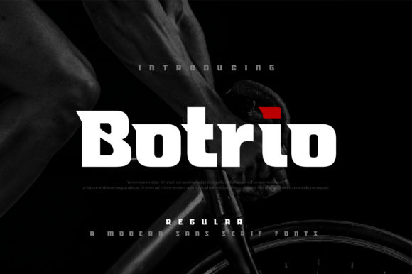 Print on Demand: Botrio Display Font By geengraphy