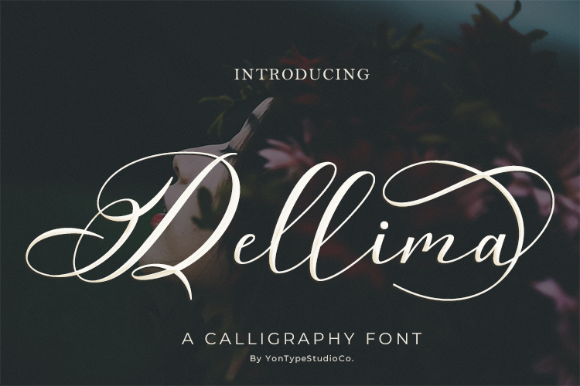 Print on Demand: Dellima Script & Handwritten Font By YonTypeStudio.Co