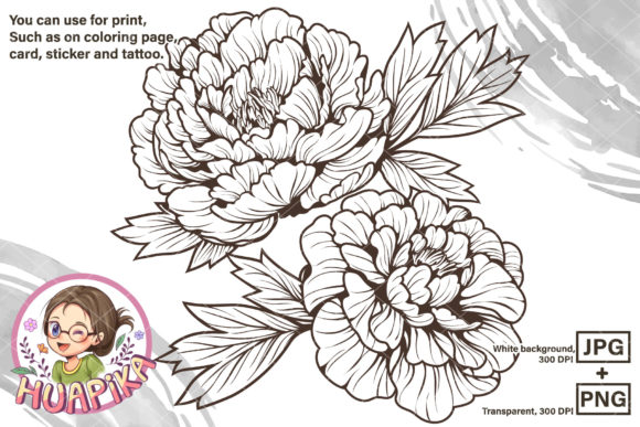 Line Drawing Peony Flower Graphic Coloring Pages & Books Adults By huapika - Image 1