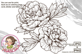 Print on Demand: Line Drawing Peony Flower Graphic Coloring Pages & Books Adults By huapika