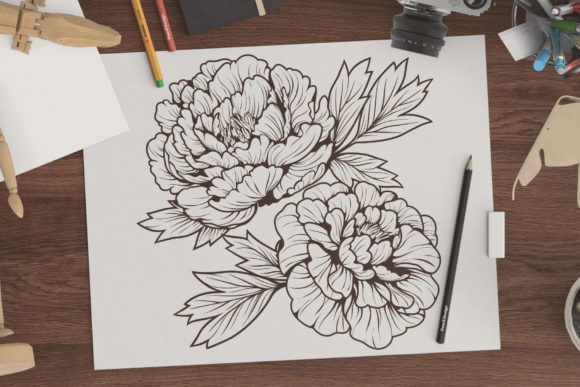 Line Drawing Peony Flower Graphic Coloring Pages & Books Adults By huapika - Image 2