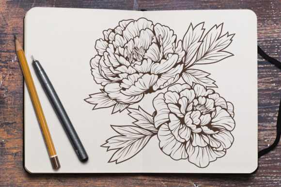 Line Drawing Peony Flower Graphic Coloring Pages & Books Adults By huapika - Image 3