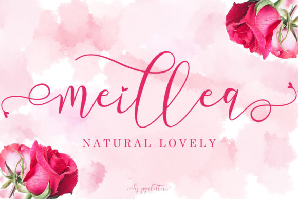 Print on Demand: Meillea Script & Handwritten Font By yogaletter6