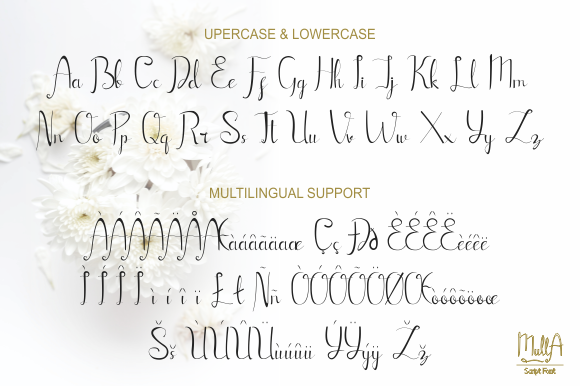 Mulla Font Preview