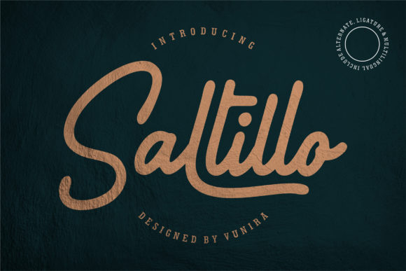 Print on Demand: Saltillo Script & Handwritten Font By Vunira