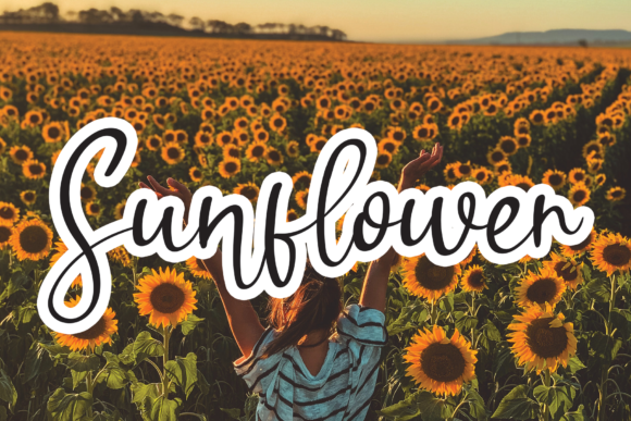 Print on Demand: Sunflower Script & Handwritten Font By handmadetipe