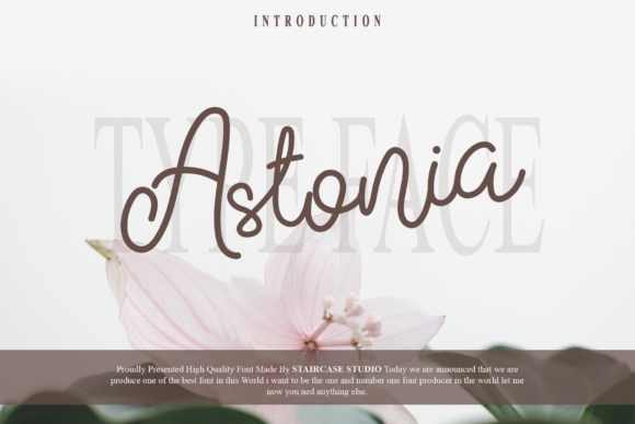 Print on Demand: Astonia Script & Handwritten Font By staircasestudio20