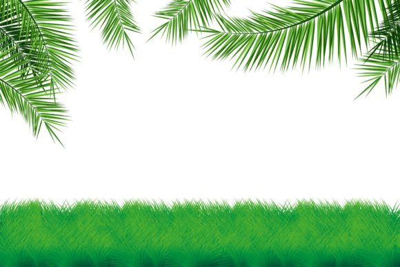 Print on Demand: Grass with Coconut Leaf Illustration Graphic Illustrations By edywiyonopp