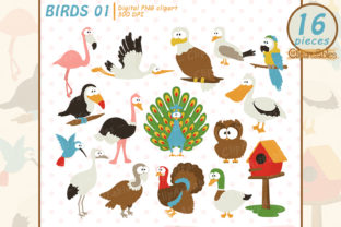 Cute Bird Clipart, Tropical Birds Graphic Illustrations By clipartfables