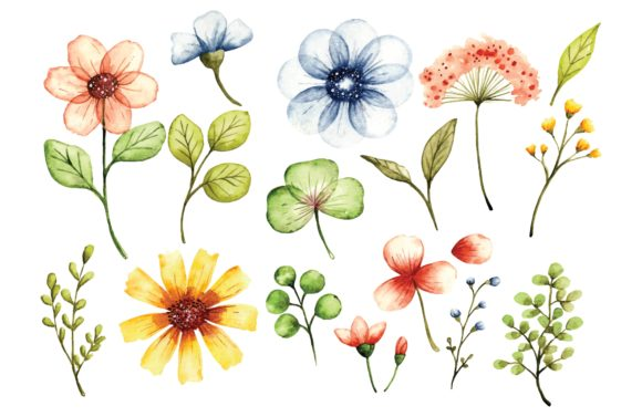 Floral Design Elements in Watercolor Graphic Illustrations By Big Barn Doodles