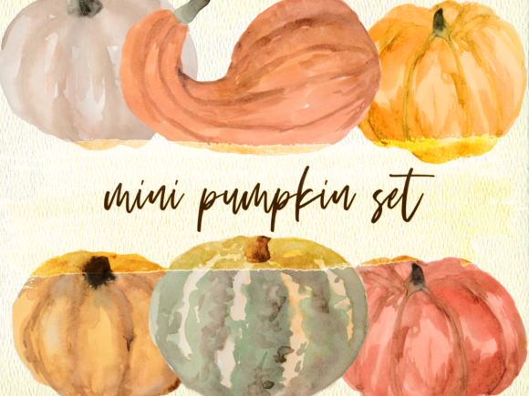 Print on Demand: Mini Pumpkin Set PNG Watercolor Clipart Graphic Illustrations By roselocket