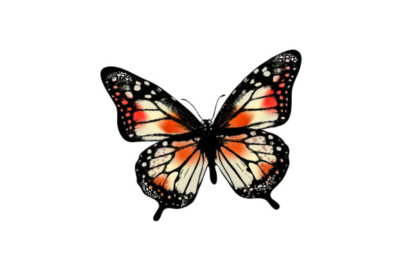 Butterfly Graphic Illustrations By hennathemes