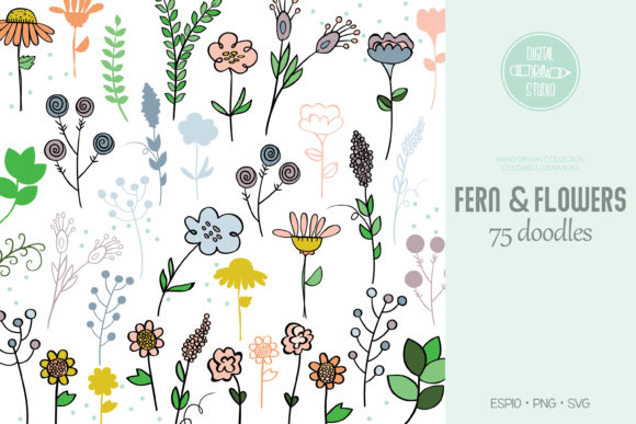 Meadow Ferns & Wild Flowers | Colored Graphic Illustrations By Digital_Draw_Studio