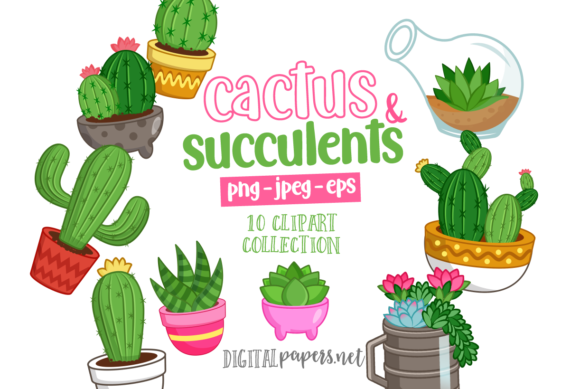 Print on Demand: Cacti & Succulents Graphic Illustrations By DigitalPapers