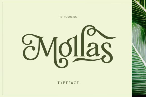 Print on Demand: Mollas Display Font By Alit Design