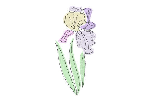 Print on Demand: Pastel and Line Art Iris Flower Single Flowers & Plants Embroidery Design By EmbArt