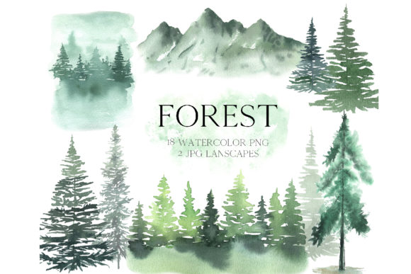 Watercolor Forest Tree Clipart Grafik Illustrationen von Larysa Zabrotskaya