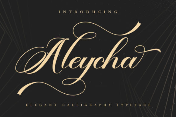 Print on Demand: Aleycha Script & Handwritten Font By Skinny type