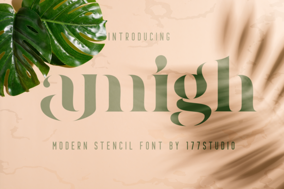Print on Demand: Amigh Serif Font By 177Studio