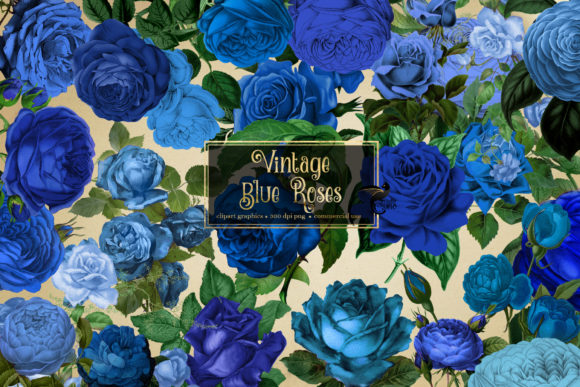 Print on Demand: Vintage Blue Roses Clipart Grafik Illustrationen von Digital Curio