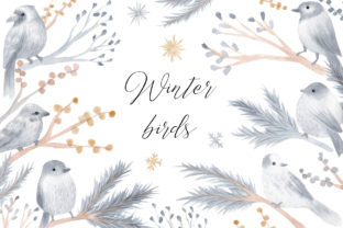 Watercolor Winter Birds Cliparts Graphic Illustrations By Slastick