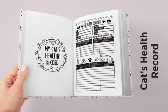 Print on Demand: KDP Cat Health Tracker Log Journal 2021 Graphic KDP Interiors By Queen Dreams Store - Image 7