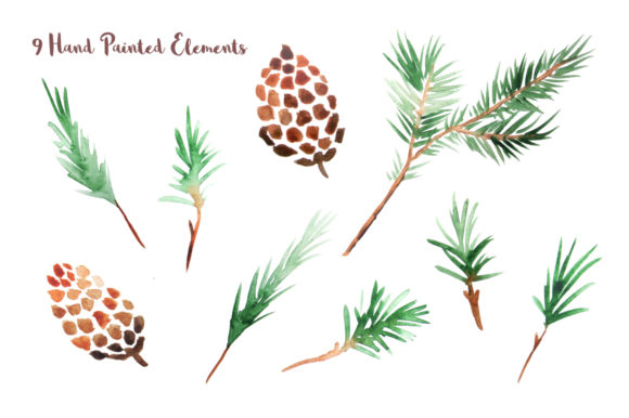 Watercolor Pine Branches Set Graphic Download