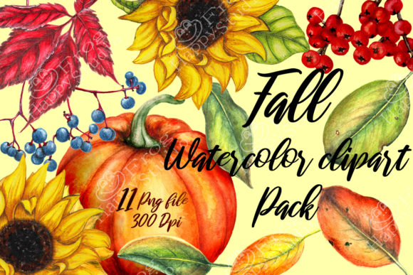 Autumn Cliparts in Realistic Style Graphic Illustrations By arevkasunshine