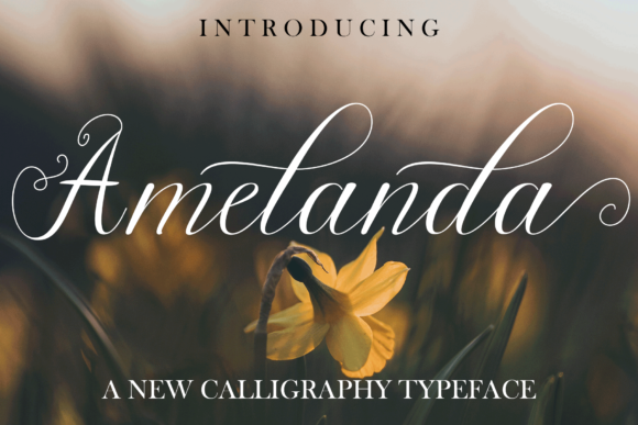 Print on Demand: Amelanda Script & Handwritten Font By Serdaribut Studio
