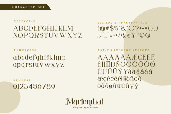Print on Demand: Marienthal Serif Font By Din Studio - Image 8