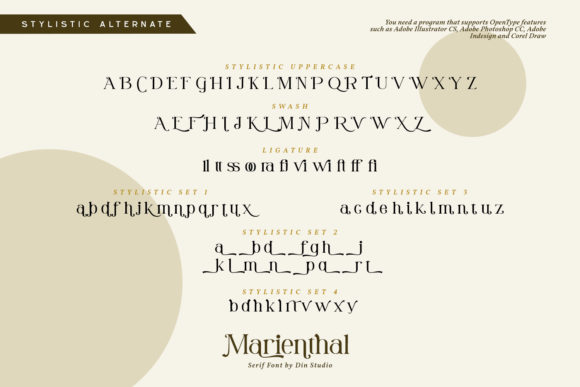 Print on Demand: Marienthal Serif Font By Din Studio - Image 9