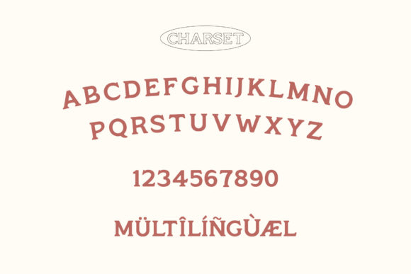 Print on Demand: Monsier Serif Font By craftsupplyco - Image 5
