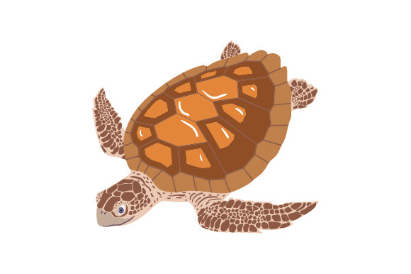 Sea Turtle Animals Craft Cut File By Creative Fabrica Crafts