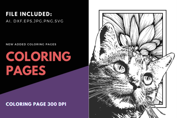 Print on Demand: Cat and Frame Cute Coloring Page Graphic Coloring Pages & Books Adults By stanosh