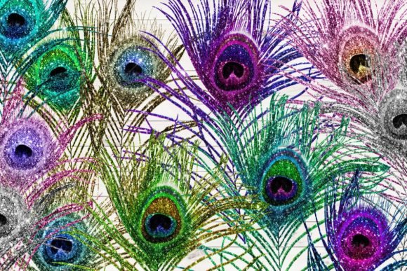 Glitter Peacock Feathers Clipart Graphic Download