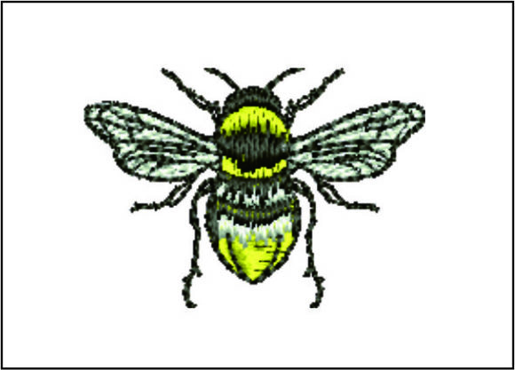 Bee Detailed Bugs & Insects Embroidery Design By Samsul Huda