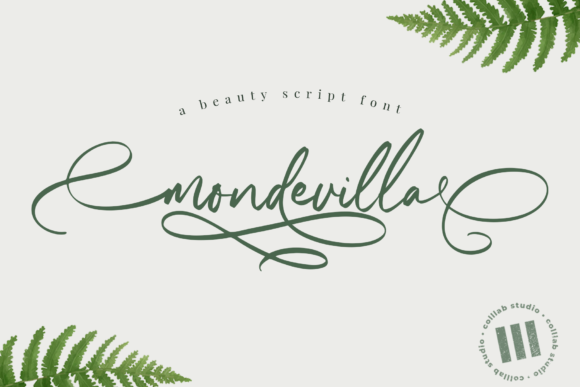 Print on Demand: Mondevilla Script & Handwritten Font By colllabstudio