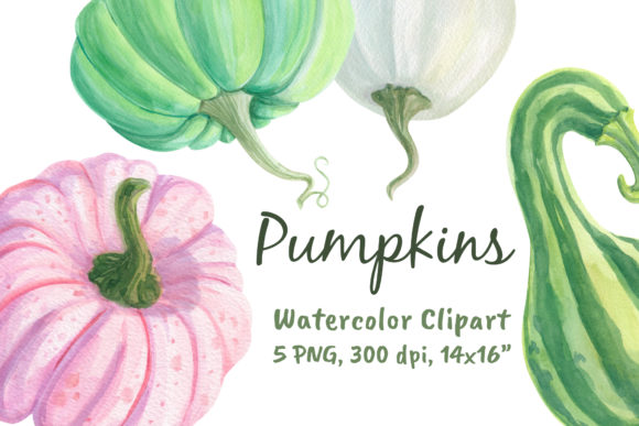 Watercolor Pumpkins Clipart Png Graphic Objects By artpanda2018
