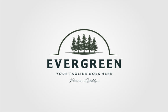 Pine Trees Evergreen Vintage Logo Vector Graphic Logos By lawoel