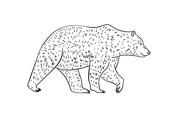 Grizzly Bear Animals Craft Cut File By Creative Fabrica Crafts