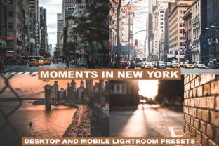Lightroom Presets Moments in New York Graphic Actions & Presets By Visual Filters