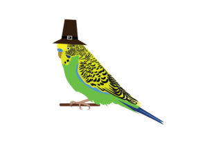 Thanksgiving Budgie Thanksgiving Craft Cut File By Creative Fabrica Crafts