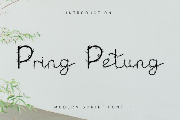 Print on Demand: Pring Petung Decorative Font By dazzlinggleam