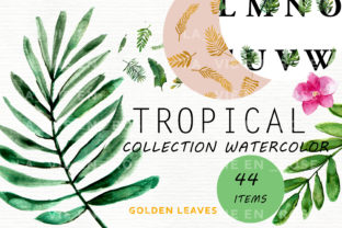 Watercolor Clipart with Tropical Leaves. Graphic Illustrations By Julia Bogdan