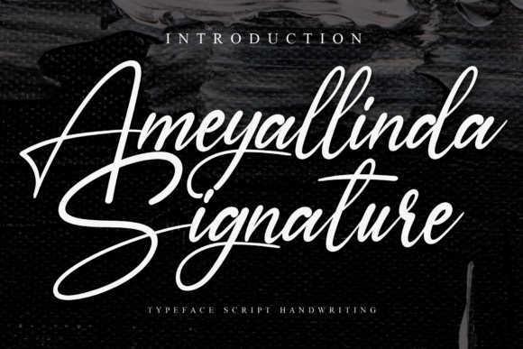 Print on Demand: Ameyallinda Signature Script & Handwritten Font By Creativewhitee