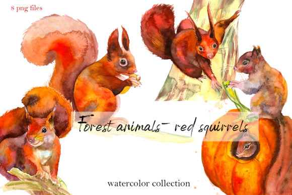 Forest Animals Red Squirrels. Watercolor Graphic Illustrations By ElenaZlataArt