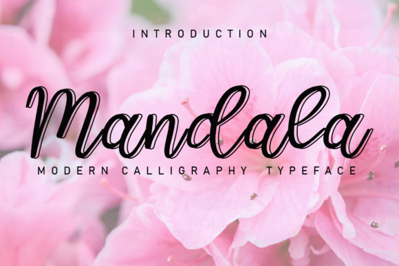 Print on Demand: Mandala Script & Handwritten Font By giatstudios