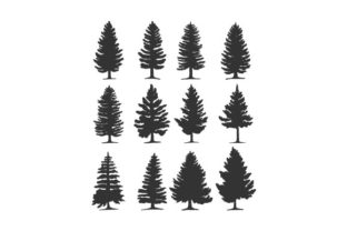 Pine Tree Vector Silhouette Illustration Graphic Illustrations By hartgraphic