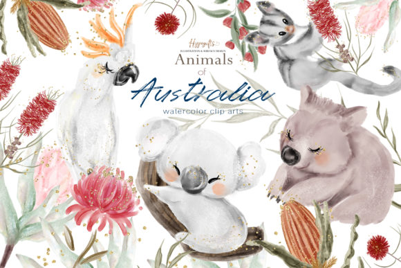 Australia Animals Illustration Graphic